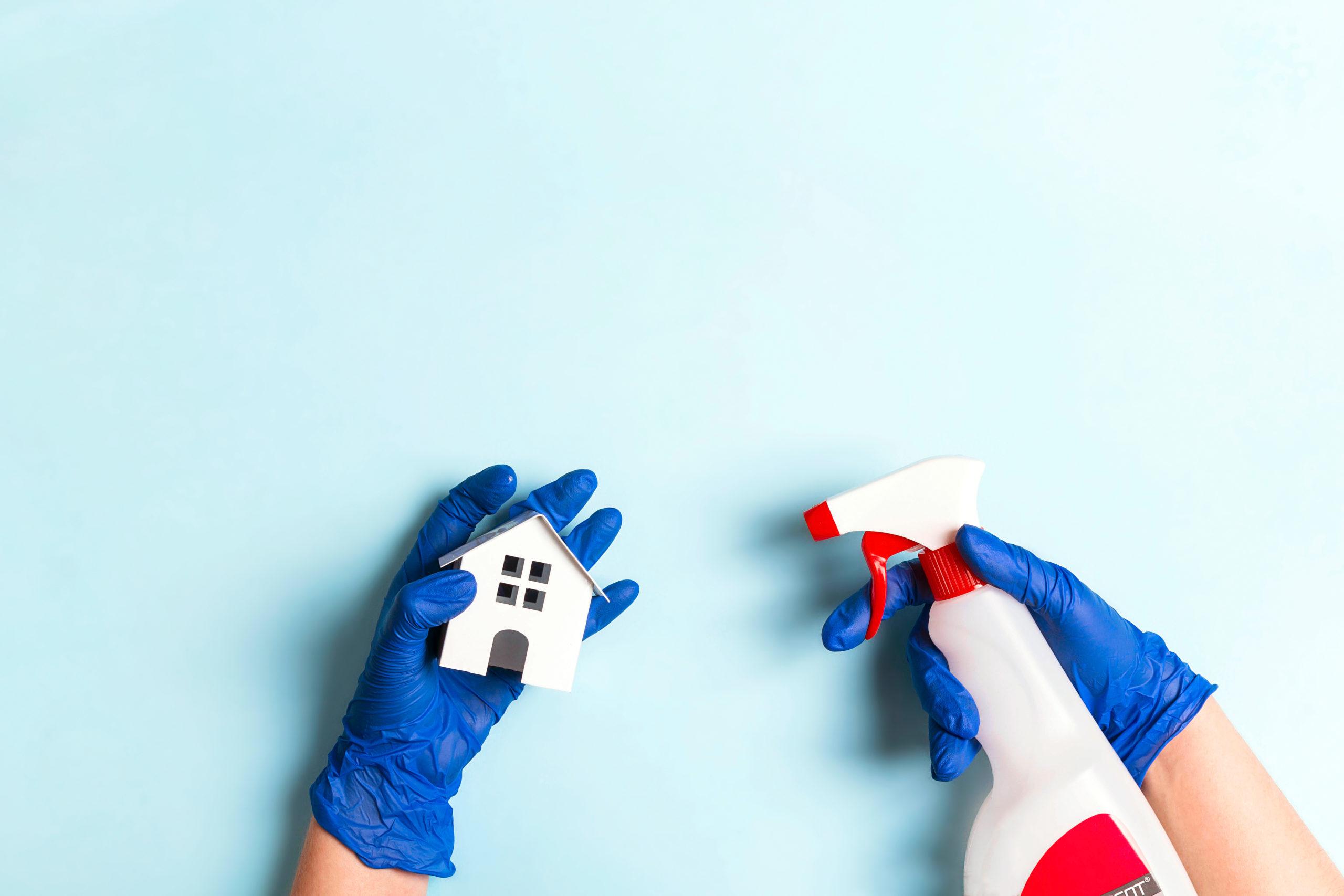 Desinfectando casa